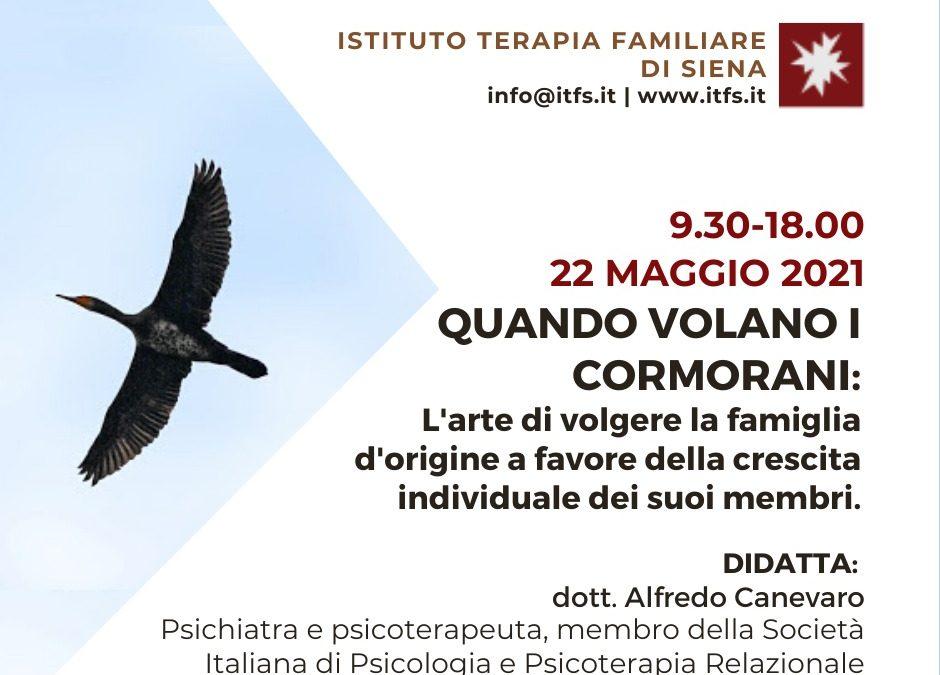 SABATO 22 MAGGIO – Alfredo Canevaro –  Quando volano i cormorani. L'arte di volgere la famiglia d'origine a favore della crescita individuale dei suoi membri.